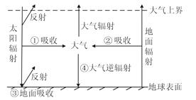 图片_x0020_11